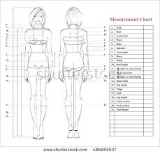 full body measurement chart body measurement chart template excel for sewing fitness tracker