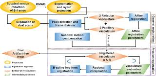 Flow Chart Outlining Automatic Motion Compensation In Skin