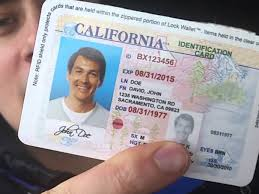 Using - Things Fake Id You Reviewfakes Know About Need To