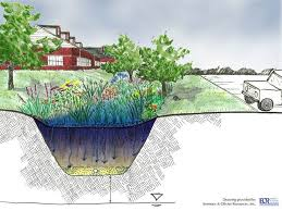 Small Picture 22 best Rain Gardens images on Pinterest Rain garden Garden