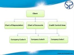 Sap Sd Organizational Structure Flow Chart Sap Fi Organizational Structure Sachin H Patil