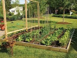 Small Picture backyard 2 Small Backyard Vegetable Garden Vegetable Garden
