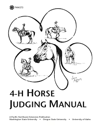 Image result for horse judging