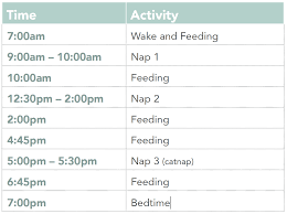 5 Month Old Baby Feeding Chart 5 Month Old Ideal Nap Schedule Helpful Has Schedules For