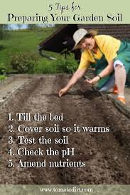 your soil for planting tomatoes