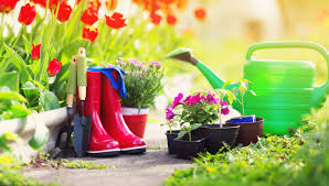 fill your garden get your gifts discover delights in our garden guide