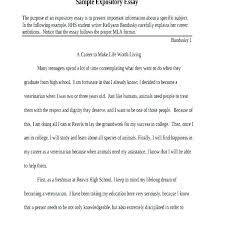 Example Of A Short Essay Composition Essay Example Essay Format
