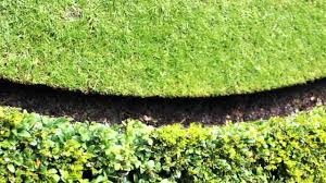 Small Picture Traditional Lawn Edging YouTube