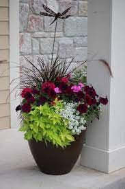 container flowers flower pots