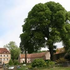 photo of morvan saint brisson nièvre france la maison du parc et