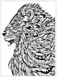 mountain lion coloring page pages of a king lions free for ring li