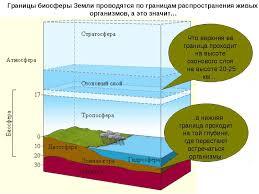Презентация ЧТО ТАКОЕ БИОСФЕРА скачать бесплатно Границы биосферы Земли проводятся по границам распространения живых организмо