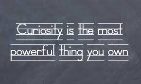 Curiosity Quotes 24 Famous Curiosity Quotes And Sayings 5