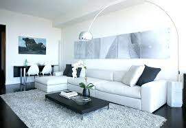 plush area rugs for living room. Plush Area Rugs For Living Room Gray New Shag Rug With . M