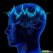 импульсы в мозге