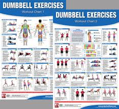 Dumbbell Workout Chart Details About Dumbbell Exercises Workout Professional Fitness Gym Wall Charts 2 Poster Set