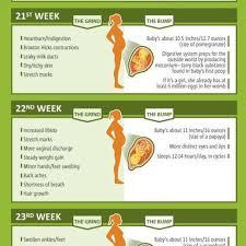 Pregnancy Week By Week Chart Baby Pregnancy Chart 26