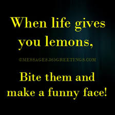 Funny Quotes About Life 40greetings Classy Hilarious Quotes About Life