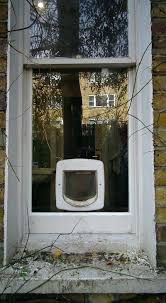 window cat doors o single glazed window or door cat door window insert diy sash window window cat doors