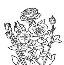Small Picture Realistic Sunflowers coloring page for kids flower coloring pages