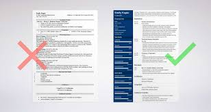 What To Put In Professional Profile On Resume 20 Resume Profile Examples How To Write A Professional Profile Tips