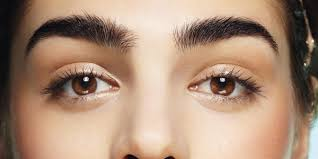 5 Ways To Maintain Your Brows Between Appointments