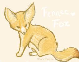 fennec fox drawing. Interesting Fox Fennec Fox By Thelegendoftiffany  On Drawing