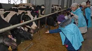 Пути реализации продукции животноводства 254 Пути повышения эффективности производства продукции животноводства производства продукции животноводства на предприятии любой формы