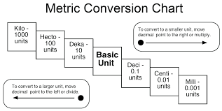 76 Unusual Metric System Grams Conversion Chart