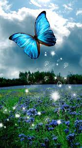 Butterfly Mobile Wallpapers - Wallpaper ...