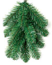 PVC Branch Image ...