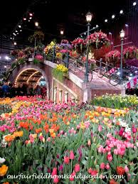 field trip 2017 philadelphia flower show holland flowering the world