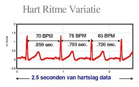 Hart ritme variabiliteit