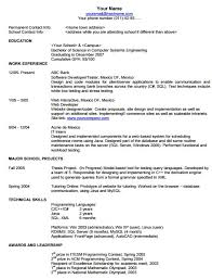 American Resume Format Adorable Job Search Skills Format Of Resume
