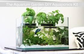 Self Cleaning Fish Tank Garden Aquaponics Inhabitat Green Design Innovation Architecture