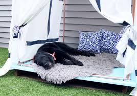 so far my dogs especially hudson have loved this giant diy outdoor raised dog bed i outline the steps below
