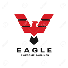 bald eagle template eagle head logo template hawk mascot graphic bald eagle vector