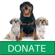 animal shelter donate.  Donate The Humane Animal Welfare Society  Waukesha County Shelter With Donate H