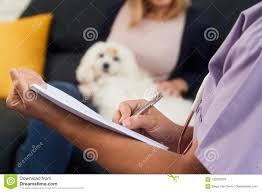 Doctors Note For Dog Vet Writing Health Care Note For Dog Prescription Medicine Stock