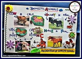 essay on domestic animals related post of essay on domestic animals