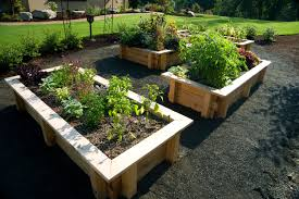 Planning A Kitchen Garden Kids Gardening Tips Ideas Projects At Home