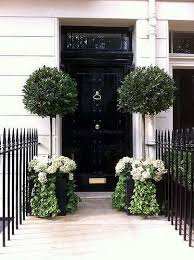 fantastic black high gloss front door and potted topiaries with hydrangeas