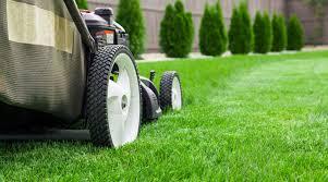 winter haven fl lawn care services
