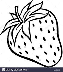 black and white strawberry clipart. Plain Strawberry Strawberries Clipart Black And White Jpg Freeuse Download And Black White Strawberry Clipart R