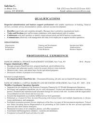 Examples Of Administrative Resumes Simple Samples New York Resume Writing Service ResumeNewYork