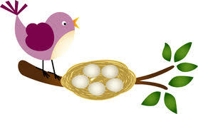 bird nest with eggs clipart. Fine Bird Bird With Eggs In A Nest On Branch Scalable Vectorial Image Representing  Bird In With Clipart