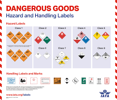 Cargo Compatibility Chart Iata Dgr Posters