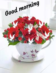 good morning gif sweety sharechat funny