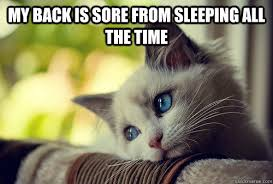 My back is sore from sleeping all the time - First World Problems ... via Relatably.com