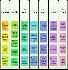 Developmental Psychology Mind And Behaviour